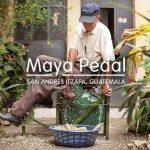 Maya Pedal Horse Ride Fundraiser