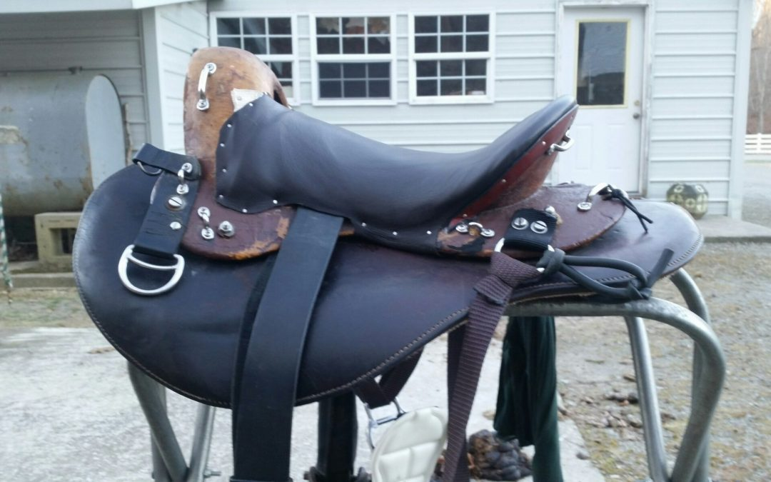 Orthoflex/ Eli Miller Custom Travel Saddle