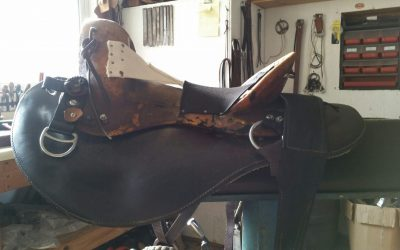 Comfort for horse and rider