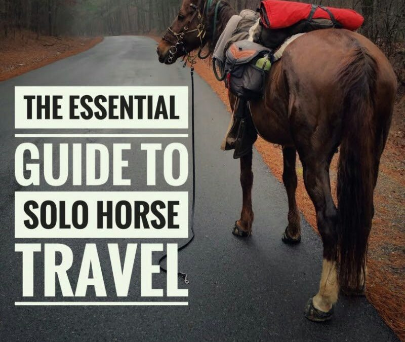 Essential Guide to Solo Horse Travel