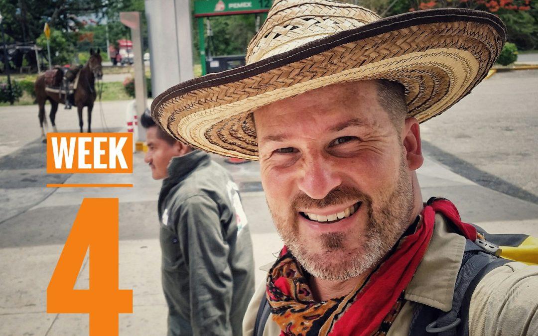 WEEK 4 | 5001: México a Caballo