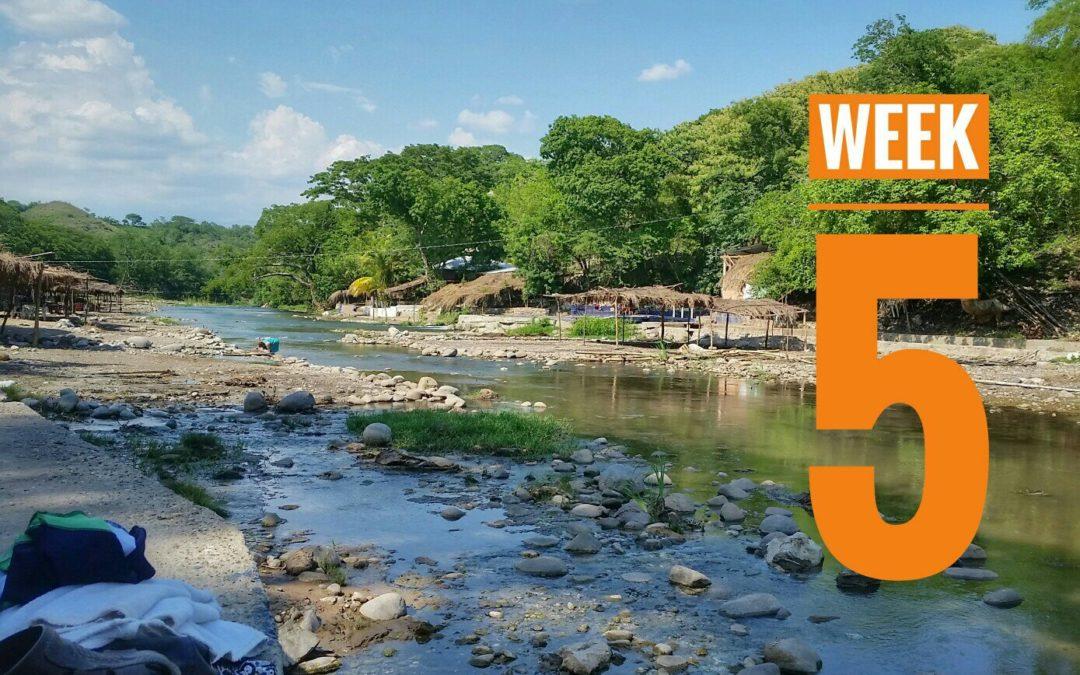 Week 5 | 5001: México a Caballo