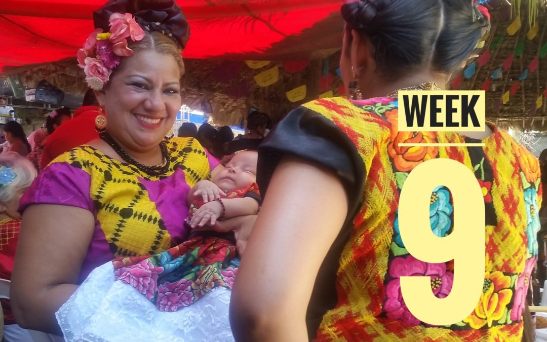 WEEK 9 | México a Caballo