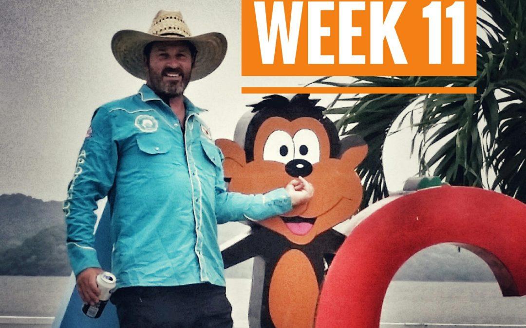WEEK 11 | México a Caballo