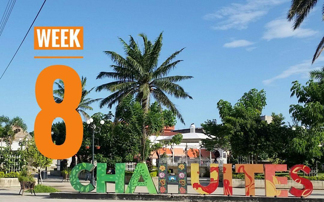 WEEK 8 | Mexico a Caballo