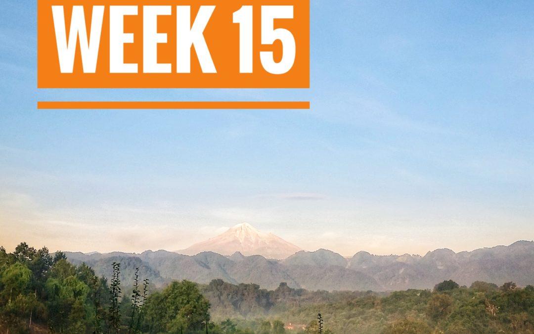 WEEK 15 | Mexico a Caballo