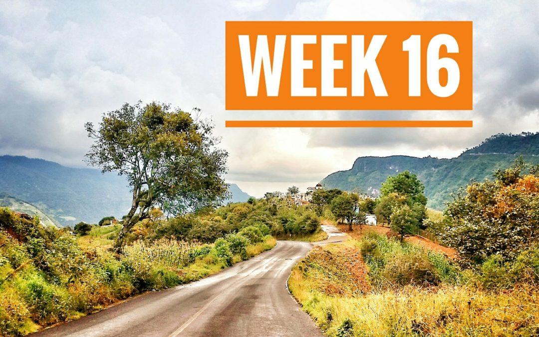 WEEK 16 | 5001: Mexico a Caballo