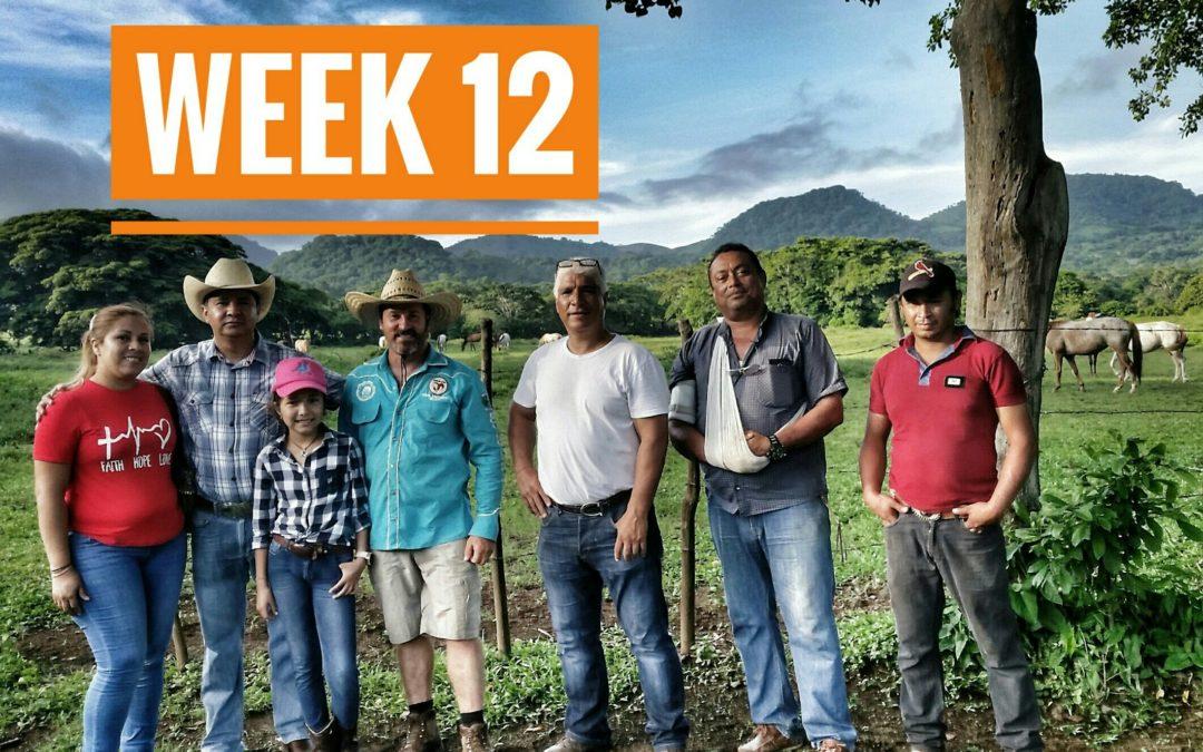 WEEK 12 | Mexico a Caballo