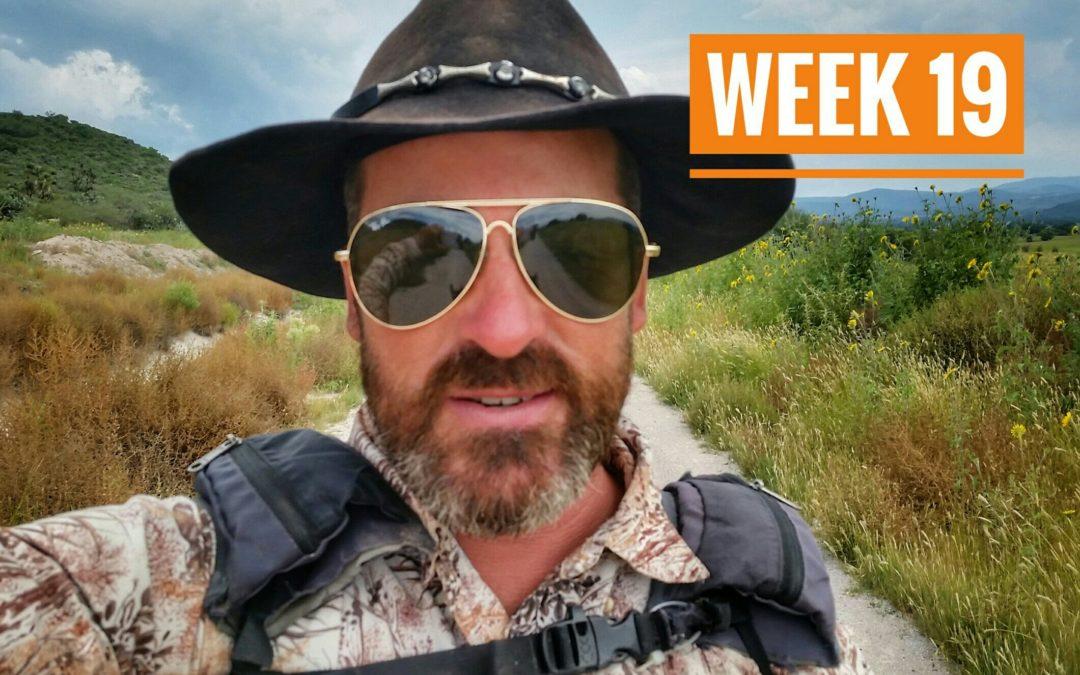 WEEK 19 | México a Caballo