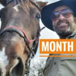 Month 6 | 5001 Mexico a Caballo.