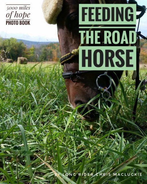 Feeding the road horse